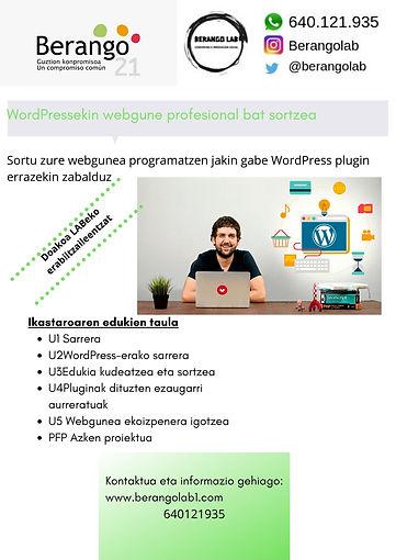 Copia_de_Creación_de_una_web_profesiona