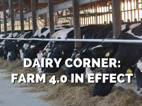 Dairy Corner: FARM 4.0 in Effect