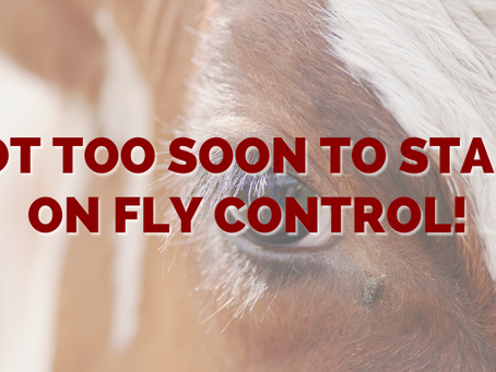 Not Too Soon to Start on Fly Control!