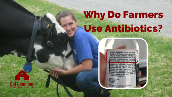 why do farmers use antibiotics