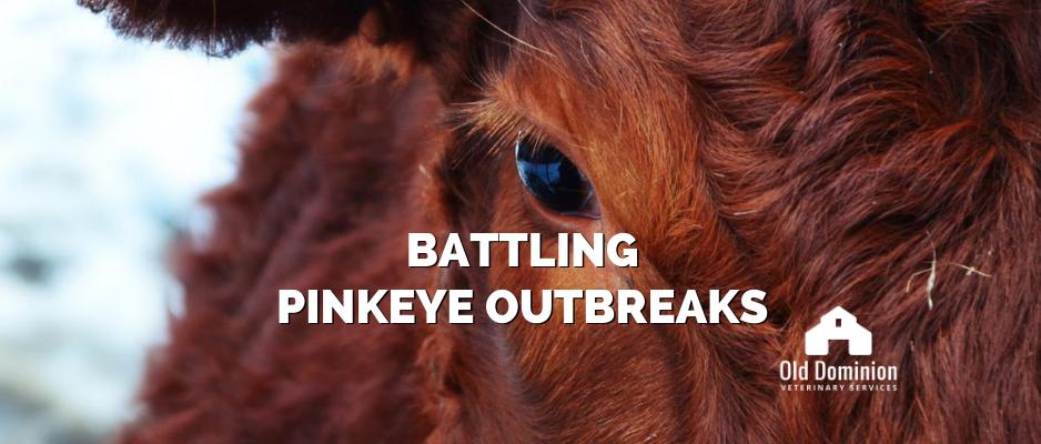 Battling Pinkeye Outbreaks