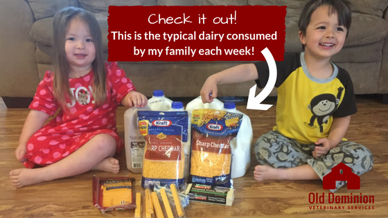 Four Healthy Reasons to Support Dairy