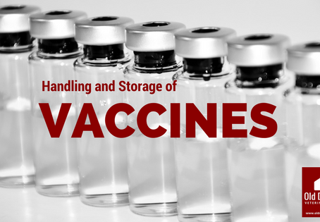 Proper Vaccine Handling and Storage