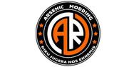 arsenic_modding.jpg
