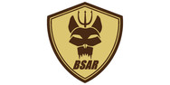 bsar.jpg