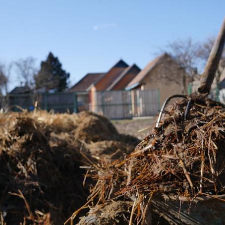 Komposztszórás / SPreading Compost