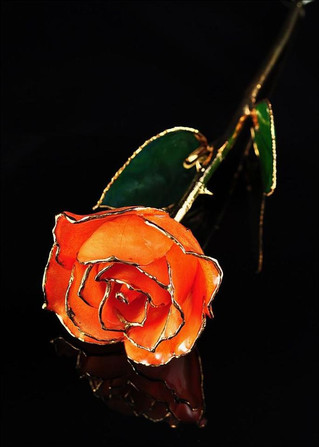 Valentine's Day Flowers - How About 24K Gold Dipped Roses Instead?