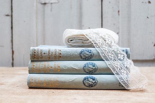 Powder Blue Antique French book bundle