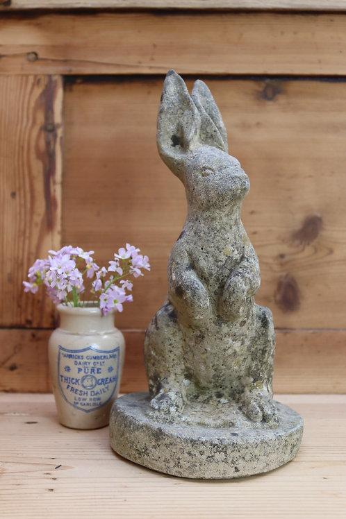 Stone Hare