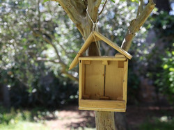 les oiseaux sont bienvenus du Clos du Théron, chambre d'hôtes à Cournonterral, HéraultThéron, chambr