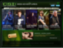CSI online.JPG