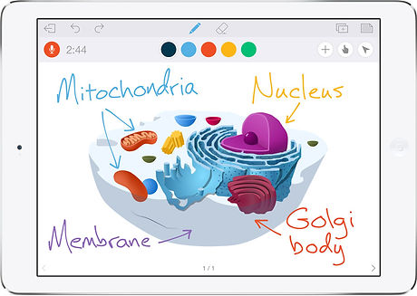 educreations2.jpg