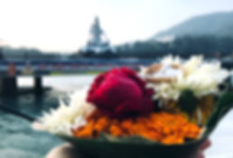 Indien_Flower2.jpg