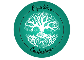 Logo Equilibre et geobiologie.png