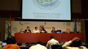 COP11 Policy Round Up no. 1