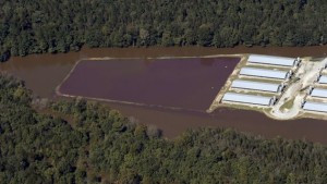 Flooded hog manure lagoon in North Carolina after Hurricane Matthew