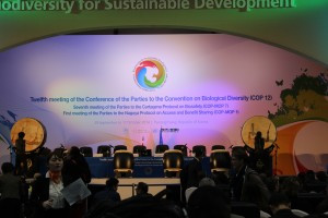 Convention on Biological Diversity – COP 12. Pyeongchang, South Korea