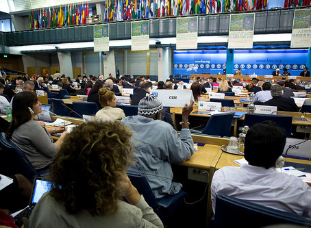 Biofuels Industry strong arms Governments at UN Food Security conference