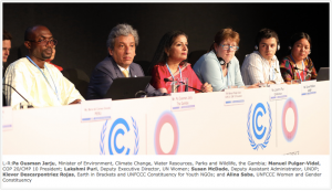 Gender Day at COP20