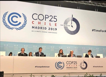 What COP25 presidency failed to mention at opening plenary.