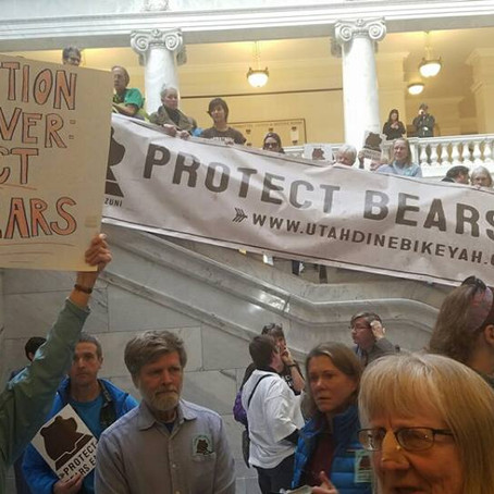 Bears Ears National Monument: The Argument Continues