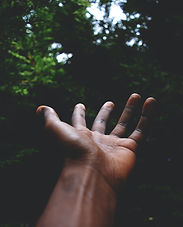 hand in color.jpg