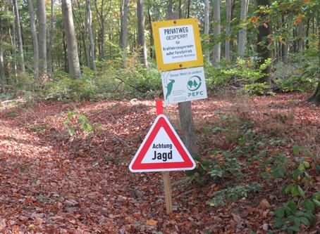 Massaker im Wald - Krieg gegen Wildtiere