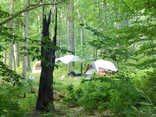 Camping along wild an scenic rivers in PA