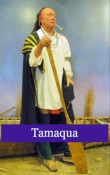 Tamaque Chief of Lnap Indians