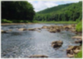 Clarion River at Summer low water flow.