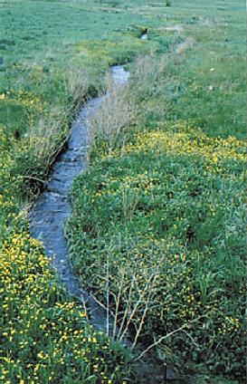 Origin of Allegheny River