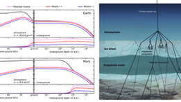 Polarized Cosmic Rays and Astrobiology