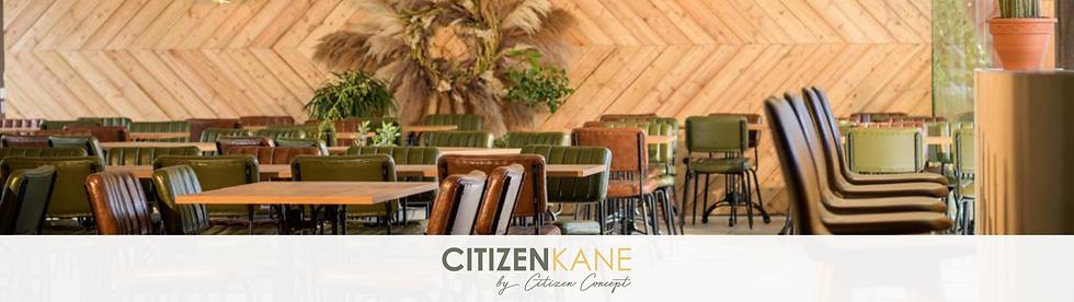 Citizen Concept (23).png