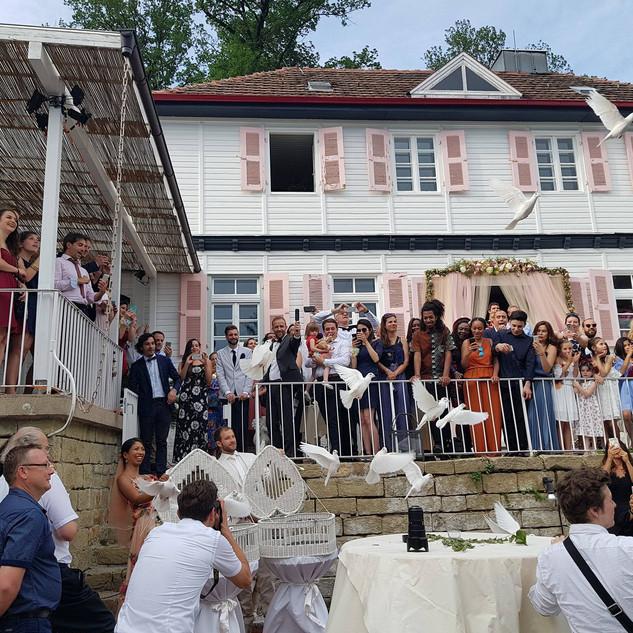 Hochzeit catering.jpg