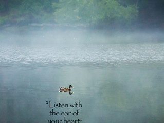 Silence and Solitude: Healing and Comfort
