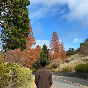 【旅行】秋の終わりに六甲へ