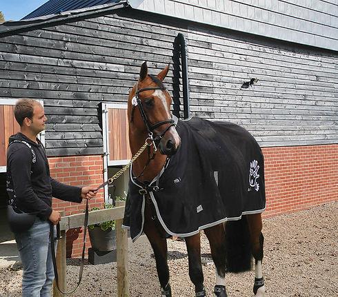 james-stables-4.jpg