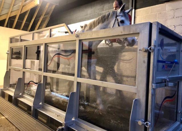 equine-aqua-treadmill.jpg