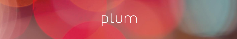 content-pillars-personas-plums.png