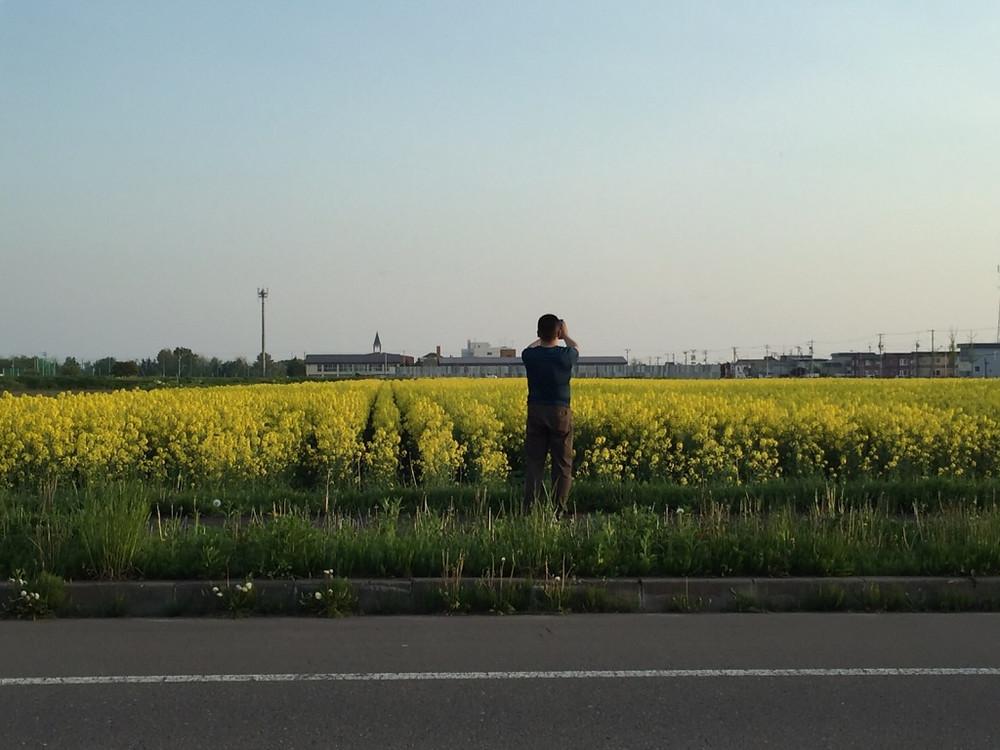 菜の花畑撮影中