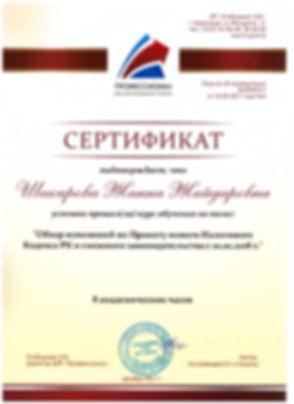 сертификат 3.jpg