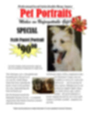 Pet Portraits flyer 2018.jpg