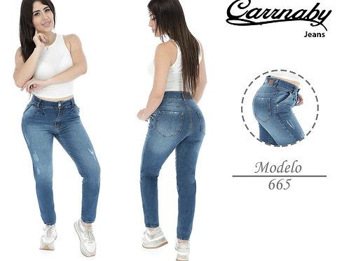 MODELO 665