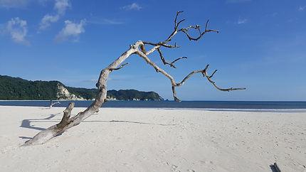 Sumba beach Tarimbang
