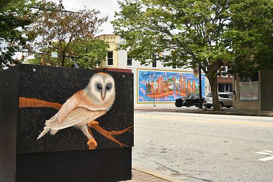 Owl and Reidsville sm.jpeg
