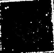 Medium Venus Final black[397].png