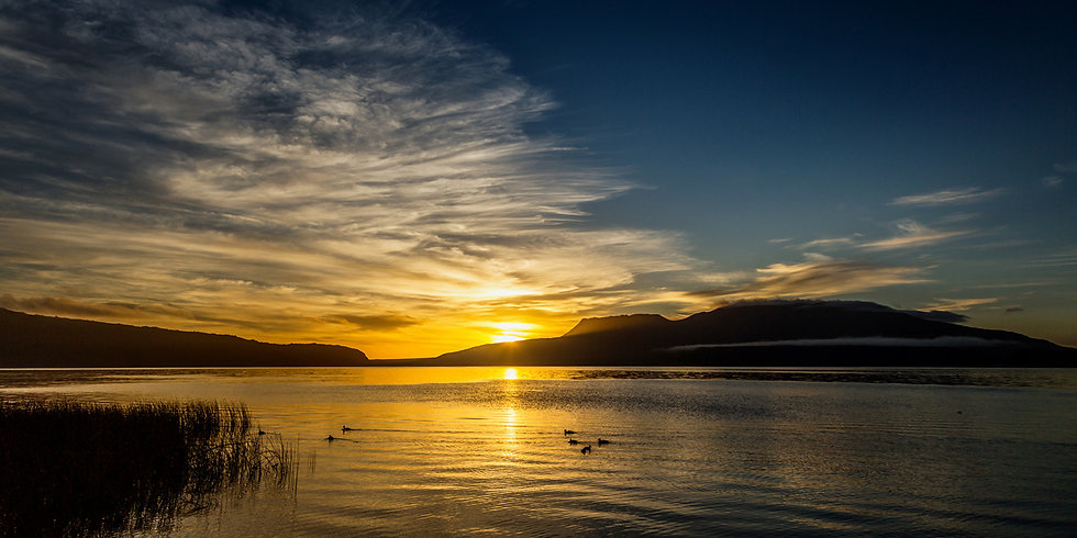 Stoney Point Dawn.jpg