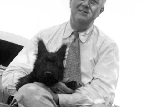 Fala, President Roosevelt's Beloved Dog