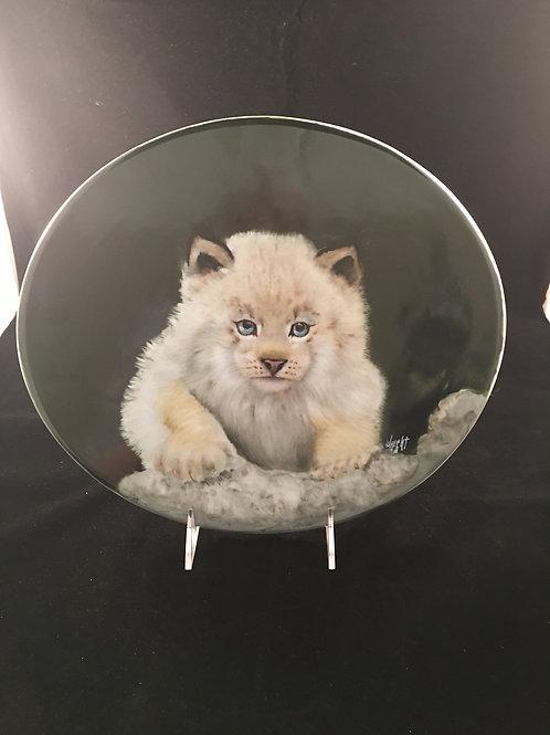 JW1  ARCTIC CAT