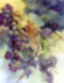 Paula Grapes.jpg